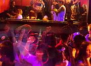 中央大学2011年・パーティー情報