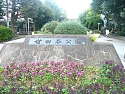 世田谷公園 野外オフ☆三茶目黒