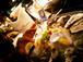 三宮発・トラゾとノリゾの食楽道