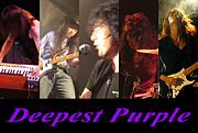 深紫の館 -Deepest Purple-
