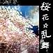 夢世界 桜花☆乱舞