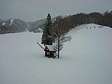 『水上宝台樹スキー場』大好き!