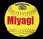 集合!宮城のソフトボール好き!