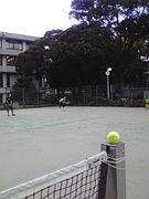 芸大テニス