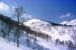 合同スキーオフ。