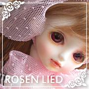 ROSEN LIED