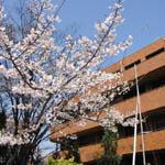 佛教大学(通信)2007年度入学