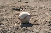 ザ・イレギュラーズ野球部