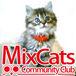 MixCats Community Club