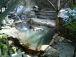 熊本の温泉ツアー