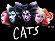 元椙中3ー4 CATS