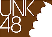 UNK48