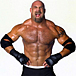 BILL GOLDBERG ������ɥС���