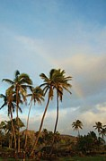 ハワイアンヒーリングWaioli
