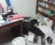 忙しくなると部屋掃除したくなる