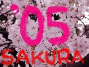 水戸桜ノ牧'05卒