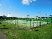 神奈川でテニス