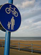 徳島の自転車乗り