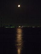 水面に映る月の風に揺らぐを眺め