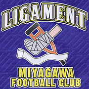 ☆LIGAMENT☆