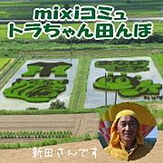 トラちゃん田んぼ