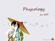 金沢工業大学 心理情報学科