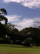 私は、長崎を愛しています!