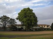 有水小学校