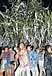 拝島榊祭り