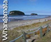 ニュージーランド&Whangamata家