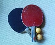 岐阜で卓球するんだぞぉ☆の会