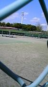 ☆半高59回生☆硬式テニス部