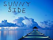 SunnySide2010