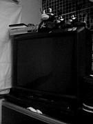 TVを友達からもらう。