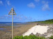 沖縄サーフィンの会