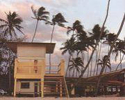 Loco Style Hawaii