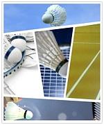 X-star's Badminton