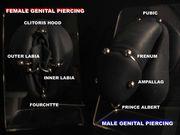 SEXUAL PIERCING