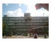 九州大学大学院比較社会文化学府