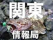 関東圏 釣りガール♪