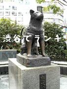 渋谷でランチ