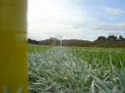 秋田県立大学 サッカー部