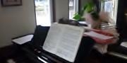 レストランでピアノを弾こう会