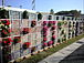 都市で立体型菜園・緑花を実験中