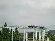 SP 08