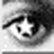 〜眼力〜 応植研究室