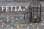 FETIA☆☆