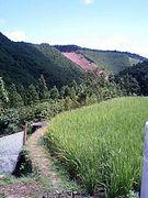 和歌山県 大塔村コミュ