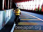 BEE JAPAN