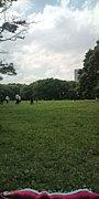 代々木公園でのほほん。